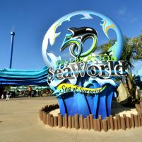 USA & CANADA DAY  9 : THEME PARK (PILIH OPTION DIBAWAH INI) sea_world